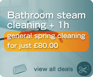Bathroom steam cleaning + 1h spring cleaning deal for just £80